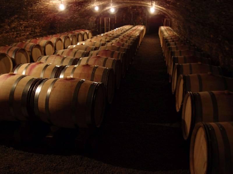 Cesta za vínem do Alsaska a Burgundska