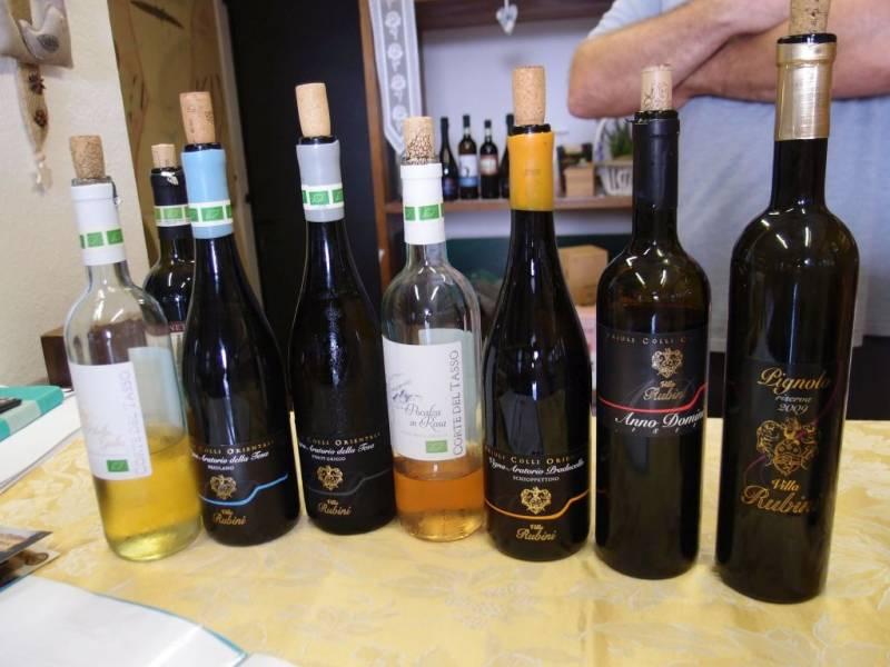 Vinařská oblast Friuli