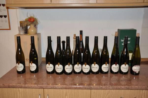 """Ve vinařství Špalek a večerní """"archivy"""""""